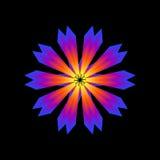 Gloeiende bloem Royalty-vrije Stock Afbeelding