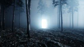 Gloeiende deur in het bos Lichte portaal van de mistnacht Mistic en magisch concept Realistische 4K animatie stock footage