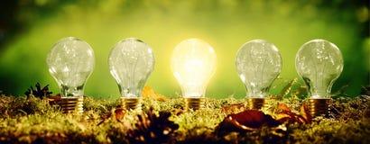 Gloeiende eco vriendschappelijke elektrische gloeilamp Royalty-vrije Stock Foto
