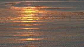Gloeiende ijzige watergolven stock video