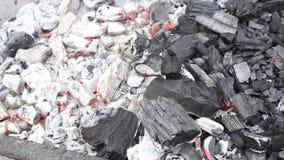 Gloeiende steenkolen stock videobeelden