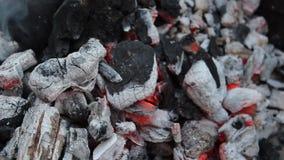 Gloeiende steenkoolclose-up - barbecuemakro stock footage
