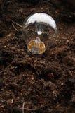 Gloeilamp Royalty-vrije Stock Fotografie