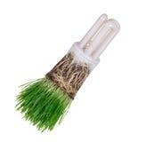 Gloeilamp in groen ecologisch concept Stock Fotografie