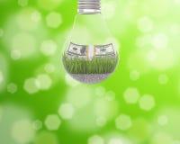 Gloeilamp met gras en een pakje van dollars binnen op groene achtergrond Stock Afbeeldingen
