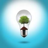 Gloeilamp met groene boom Stock Afbeelding