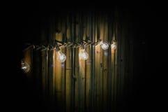 Gloeilamp op bamboe Royalty-vrije Stock Fotografie