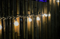 Gloeilamp op bamboe Royalty-vrije Stock Afbeeldingen