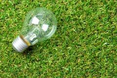 Gloeilamp op groen gras Stock Foto