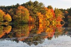 Gloire d'automne Photos libres de droits