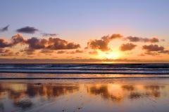 Gloire de coucher du soleil de pins de Torrey Photographie stock libre de droits