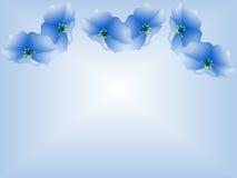 Gloires de matin bleues illustration de vecteur