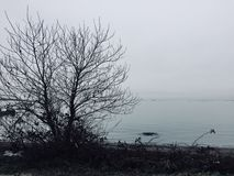 Gloom. Y day by the ocean in the late fall royalty free stock photos