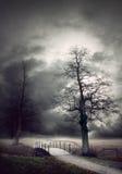 Gloomy autumn landscape Royalty Free Stock Photo