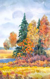 Gloomy autumn Royalty Free Stock Image
