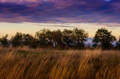 Gloomy Countryside Landscape Stock Photo