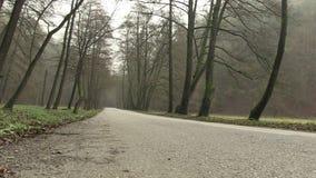 Gloomy day in national park Maninska Tiesnava, Slovakia. stock footage