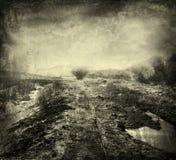 Gloomy landscape Stock Image