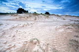 Gloomy landscape on sand dunes Stock Photo