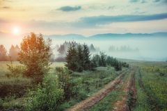 Picturesque morning scene Stock Images