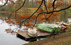 Gloomy October in city park. The sad period of an autumn season Stock Photography