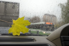 Gloomy Rainy Day. Rain on car window , bus and buildings in the blurred background on a gloomy autumn day Stock Photos