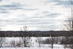Gloomy weather in winter. Russian provincial landscape.  stock photos