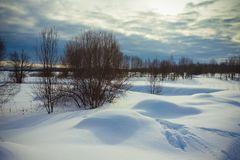 Gloomy weather in winter. Russian provincial landscape. Toned.  royalty free stock image