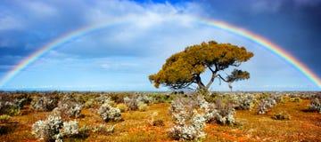 Gloria del arco iris
