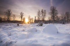 Gloria del invierno Imagenes de archivo