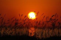 Gloria di tramonto immagine stock