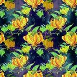 Gloriosa картина безшовная Цветки и листья - фоновое изображение акварели - декоративный состав Используйте напечатанные материал Стоковое фото RF