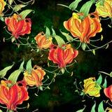 Gloriosa картина безшовная Цветки и листья - фоновое изображение акварели - декоративный состав Используйте напечатанные материал Стоковые Фото