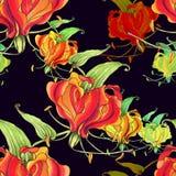 Gloriosa картина безшовная Цветки и листья - фоновое изображение акварели - декоративный состав Стоковые Изображения RF