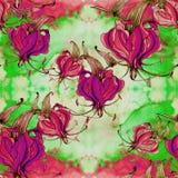 Gloriosa, цветки и листья на предпосылке акварели Стоковое фото RF