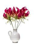 Gloriosa bouquet Royalty Free Stock Photo