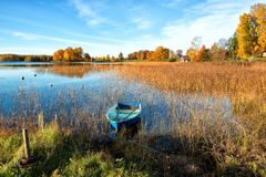 Glorious autumn morning stock images