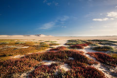 Glorious sand dune in the distance over empty tidal lagoon Royalty Free Stock Photo
