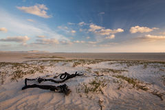 Glorious sand dune in the distance over empty tidal lagoon Royalty Free Stock Images