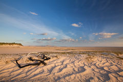 Glorious sand dune in the distance over empty tidal lagoon Royalty Free Stock Photography
