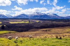Panoramic view of the Ben Nevis Range from Spean Bridge in the Highlands of Scotland royalty free stock photo