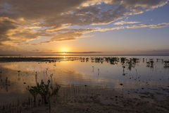 Glorious Yucatan sunset Stock Images