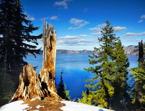 Crater Lake National Park, Oregon United States. The gloriously crystal blue waters in Crater Lake, National Park, Oregon. Crater Lake is the deepest lake in the Royalty Free Stock Images
