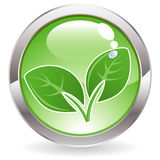 Gloss Button with leaves Royalty Free Stock Photography