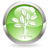 Gloss Button with tree Stock Images