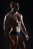 Gloss muscle bodybuilder. Royalty Free Stock Photos