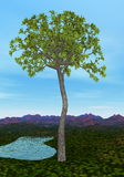 Glossopteris tree - 3D render Stock Images