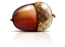 Glossy acorn Stock Photography