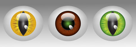 Glossy animal eyeballs. In three colors Royalty Free Stock Photo