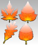 Glossy autumn leafs vector Royalty Free Stock Photography
